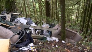 Illegal dumping ground found in Chilliwack